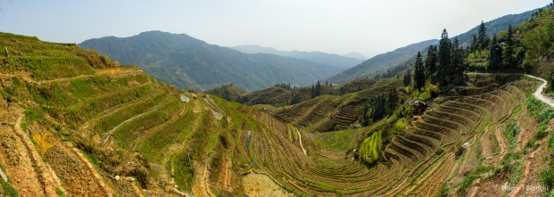 Longsheng Rice Terraces in Guilin, China