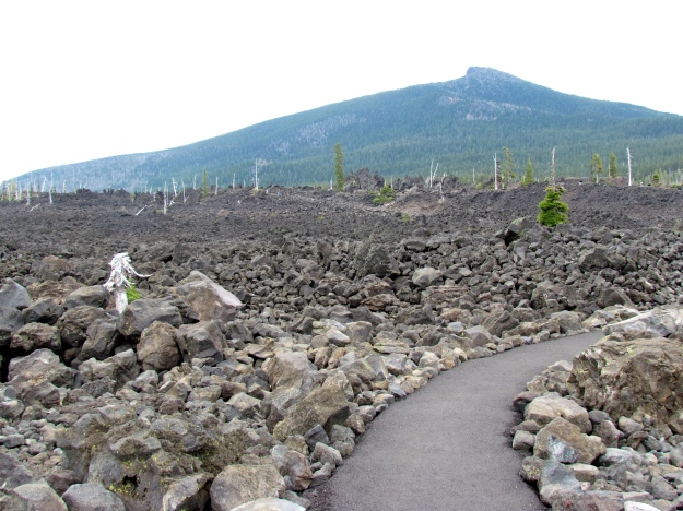 We stumbled onto a lava field in the middle of Oregon and decided to take a look.
